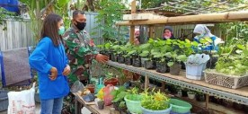 Babinsa Wirogunan Gandeng KWT Rotu Asri dan Mahasiswa KKN, Wujudkan Ketahanan Pangan